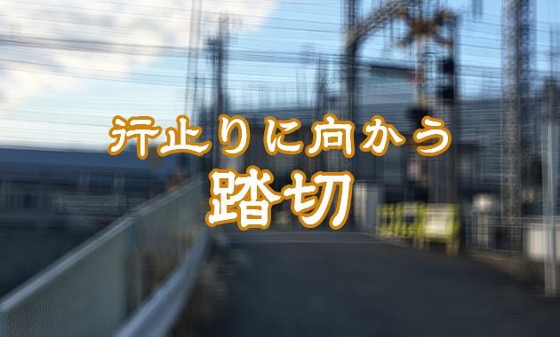 manrihashi_eye