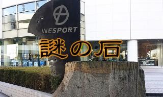 wisport_eye
